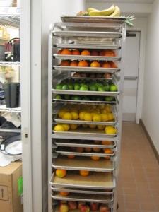 Organized shelves of food